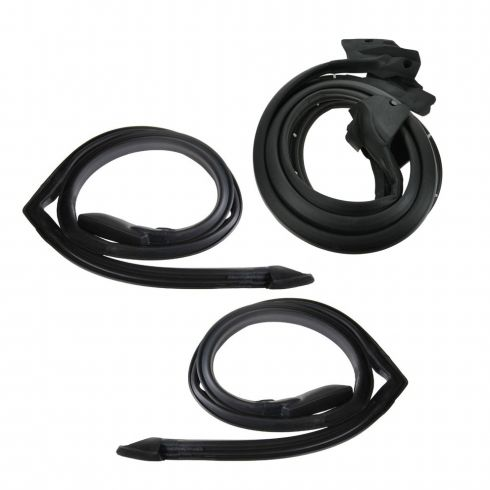 Door and Roof Rail Weatherstrip Seal Kit