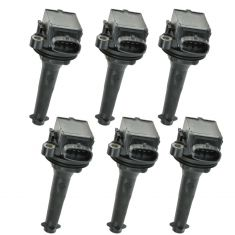 99-05 Volvo S80 2.9L; 99-01 S80 2.8L; 03-04 XC90 Ignition Coil (Set of 6) (Wells)