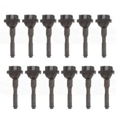 95-03 BMW 3, 5, 7, 8, X, Z Series Plug Mounted Ignition Coil (Delphi) Set of 12