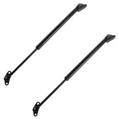 99-03 Lexus RX300 Rear Hatch Lift Support PAIR